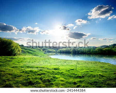 Green lawn near river in the forest #241444384