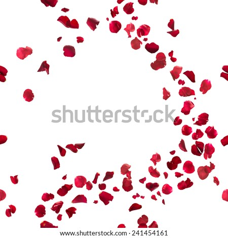 seamless, red rose petals breeze, studio photographed in depth of field, isolated on white Royalty-Free Stock Photo #241454161