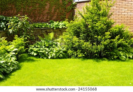 A wall Garden with cipress and bushes #24155068