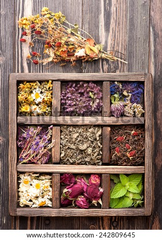 dried medicinal  herbs and flowers in a wooden box #242809645
