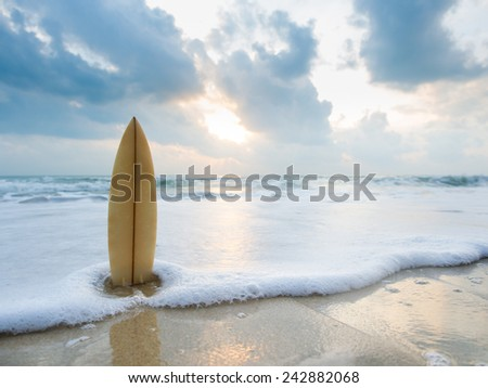Surfboard on the beach at sunset #242882068