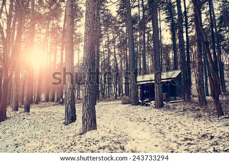 Wood house in the forest