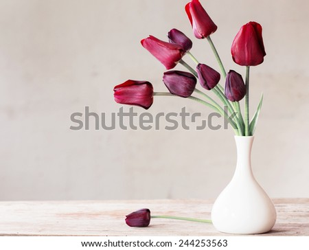 flowers on white background #244253563