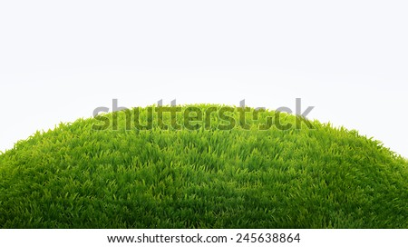 green field of fresh grass isolated on white. natural easter background Royalty-Free Stock Photo #245638864