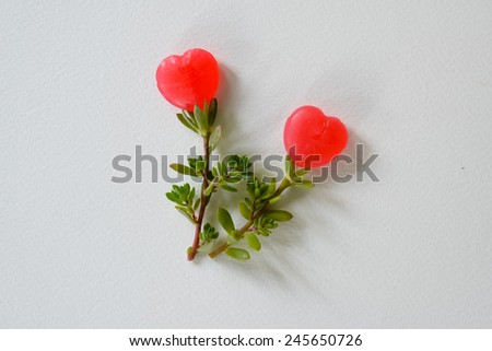 Artificial flowers made from sweet candy heart shape background for presentation.  #245650726