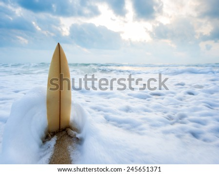 Surfboard on the beach at sunset #245651371