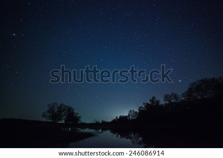 a beautiful night sky, the Milky Way and the trees #246086914