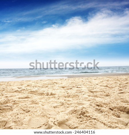 warm day and sea with beach  #246404116