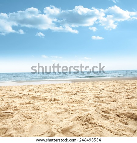 sea space and blue sky  #246493534