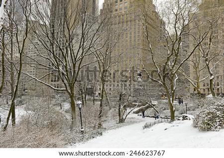 Central Park in the snow, Manhattan, New York #246623767