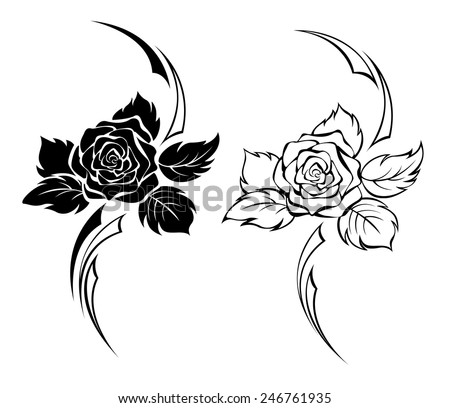 Two monochrome roses. #246761935