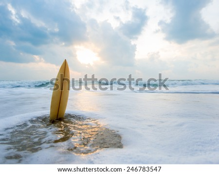Surfboard on the beach at sunset #246783547