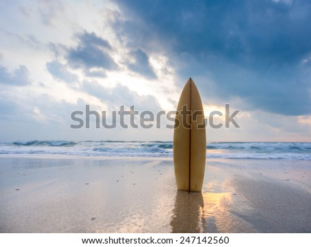Surfboard on the beach at sunset #247142560