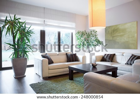 Horizontal view of living space inside house #248000854