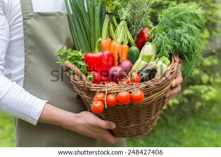 Fresh vegetables in basket #248427406