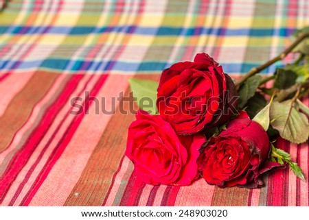 red rose with  fabric plaid Cotton #248903020