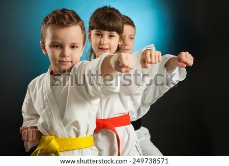 Karate martial Arts Royalty-Free Stock Photo #249738571