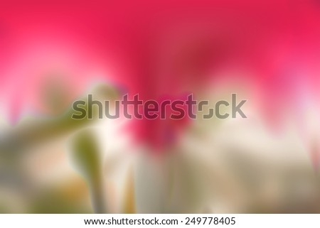 Abstract blurry wallpaper with many different colors #249778405