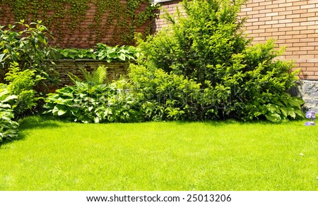 A wall Garden with cipress and bushes #25013206