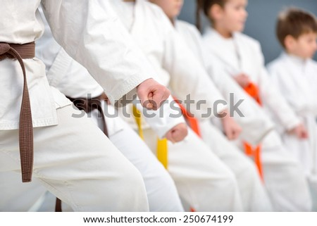 young, beautiful, successful multi ethical karate kids in karate position Royalty-Free Stock Photo #250674199