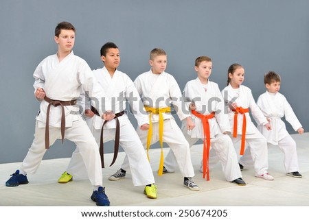 young, beautiful, successful multi ethical karate kids in karate position #250674205