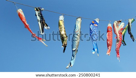 Japanese koinobori flags for Children's day on blue sky background #250800241