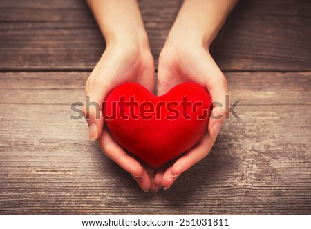 Female hands giving red heart #251031811