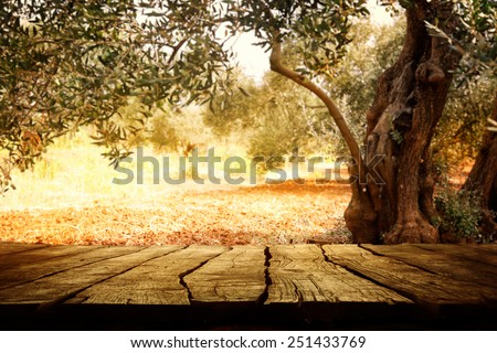Wooden table with olive tree #251433769