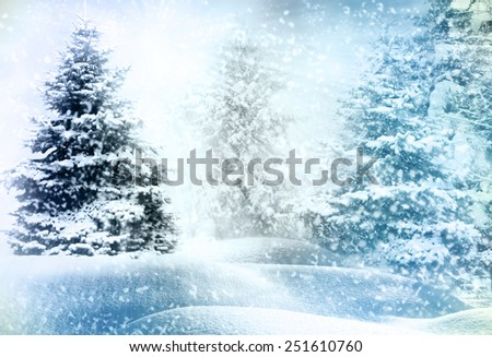 winter snow covered fir trees on mountainside  #251610760