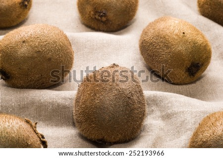 Several pieces of kiwi on canvas useful as background #252193966