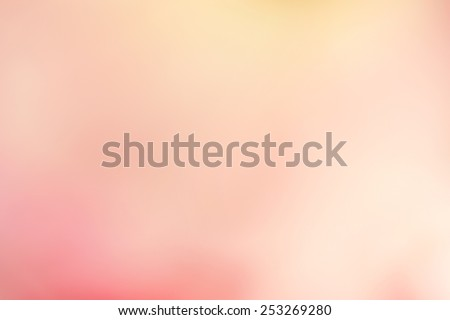 sweet color rose and hydrangeas in soft color and blur style for background