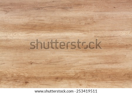 old wood texture background #253419511