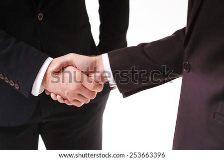 handshake of two businessmen #253663396