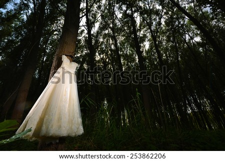 White Wedding Dress hanged in a forest #253862206