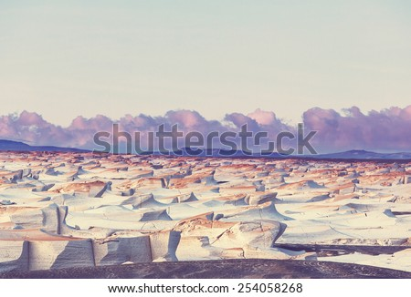 Landscapes in Northern Argentina #254058268