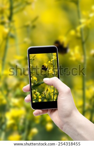 Spring background and the phone in your hands