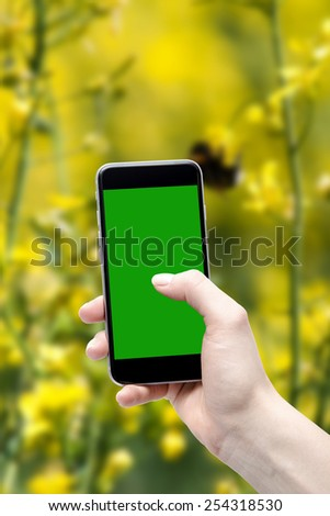 Spring background, and the phone in your hands with a blank screen