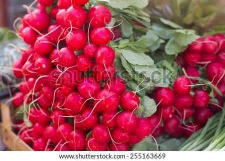 Fresh red radish on the farmers market. #255163669