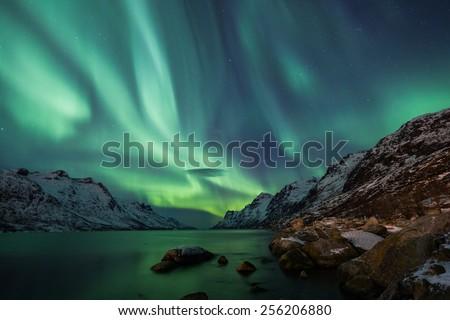 Incredible Aurora Borealis activity above the coast in Norway #256206880