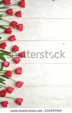 Red tulips on white wooden background.Image of spring season #256349464