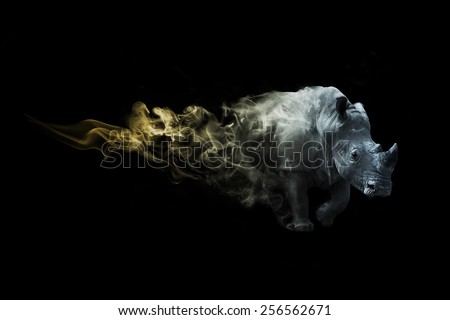 Rhino african safari. animal kingdom. amazing image of a rhino. wildlife picture. great tattoo. beautiful color, zoo