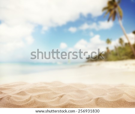 Sandy beach with blur sea on background #256931830