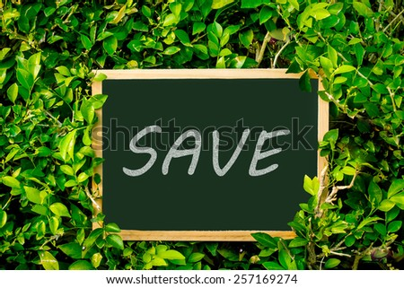chalkboard on spring summer green leaves background.