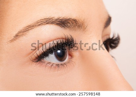Close up of a females brown eyes #257598148