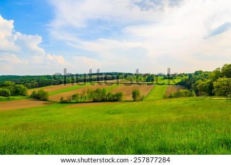 Green farming fields in countryside spring landscape, Burgenland, Austria #257877284