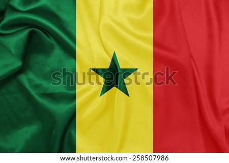 Senegal - Waving national flag on silk texture #258507986