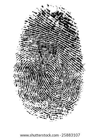 Fingerprint #25883107