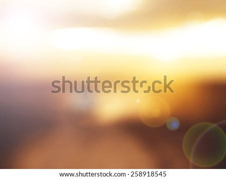 Gold desert in sunset,abstract bright blur background for web design, brown colorful background, blurred, wallpaper,flower