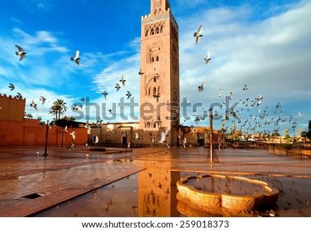 Koutoubia mosque, Marrakech, Morocco Royalty-Free Stock Photo #259018373