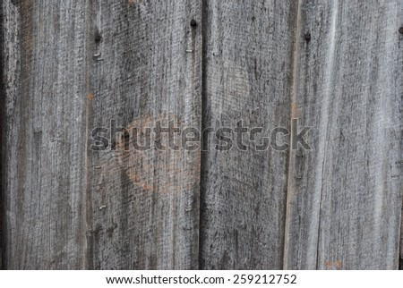 wood background, wooden,wood texture #259212752